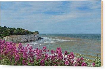 Broadstairs Sea Views Wood Print