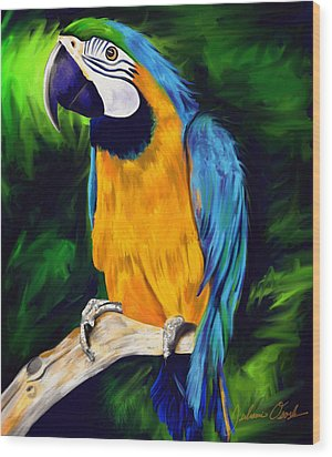 Brody Blue And Yellow Macaw Parrot Wood Print