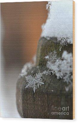 Broken Dream Wood Print by Lila Fisher-Wenzel