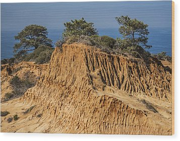 Wood Print featuring the photograph Broken Hill At Torrey Pines by Lee Kirchhevel