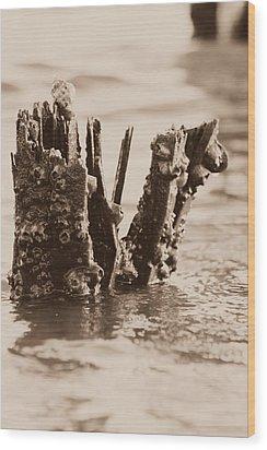 Broken Pier II Wood Print by Hillery Bosarge