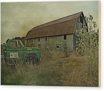 Broken Things To Mend  Wood Print by Dianne  Lacourciere