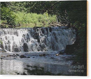 Bronx River Waterfall Wood Print by John Telfer