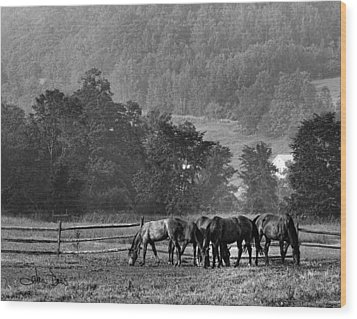 Wood Print featuring the photograph Broodmares by Joan Davis