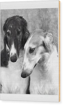 Brother And Sister Borzoi  Wood Print by Maxine Bochnia