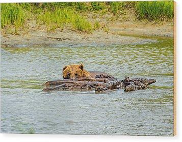 Brown Bear In Alaska Wood Print