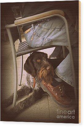 Wood Print featuring the photograph Brown Dog by Tanya  Searcy