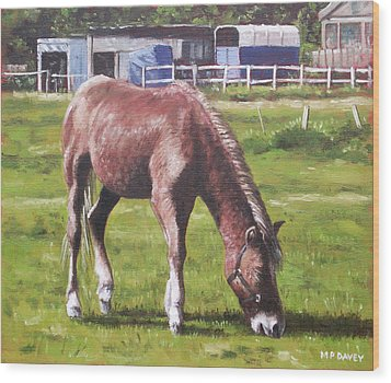 Brown Horse By Stables Wood Print by Martin Davey