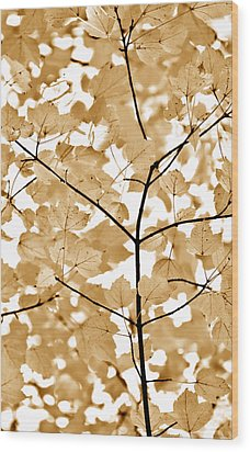 Brown Leaves Melody Wood Print by Jennie Marie Schell