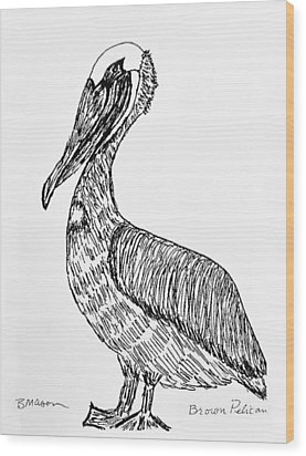 Brown Pelican Wood Print by Becky Mason