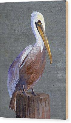 Brown Pelican Wood Print by Elaine Hodges