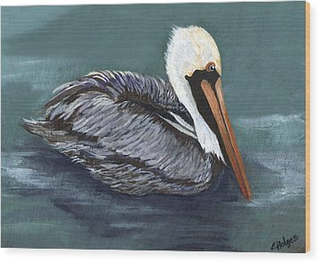 Brown Pelican On Water Wood Print by Elaine Hodges