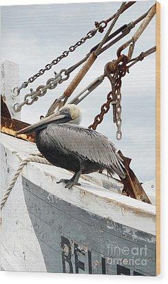 Brown Pelican Wood Print by Valerie Reeves