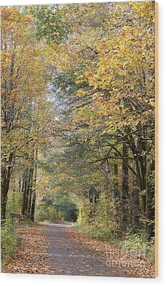 Brown's Creek In The Fall Wood Print by Terri Thompson