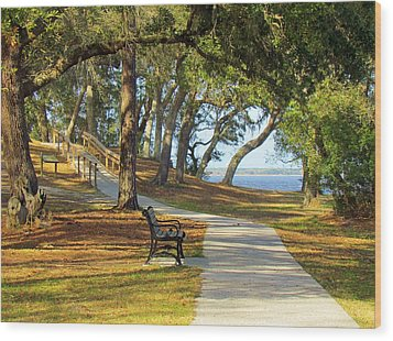 Wood Print featuring the photograph Brunswick Town by Cynthia Guinn