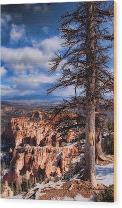 Bryce Canyon 1 Wood Print by Marti Green