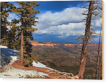 Bryce Canyon Cliff Shot 3 Wood Print by Marti Green