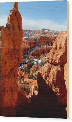 Bryce Canyon Cliff Shot Wood Print by Marti Green