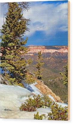 Bryce Canyon Cliff Shot 4 Wood Print by Marti Green