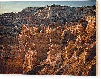 Bryce Canyon II Wood Print by Jeff Burton