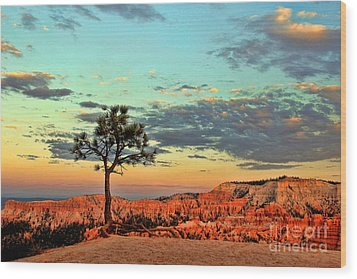 Bryce Canyon Wood Print by Leslie Kirk