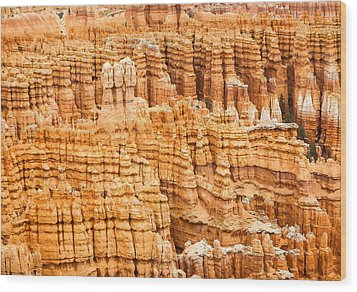 Bryce Canyon National Park Wood Print by Denise Bird