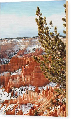 Bryce Canyon Pine Side Wood Print by Marti Green