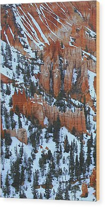 Bryce Canyon Series Nbr 22 Wood Print by Scott Cameron