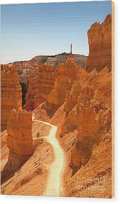 Bryce Canyon Trail Wood Print by Jane Rix