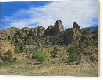 Bryce Thompson Arboretum State Park Wood Print by Feva  Fotos