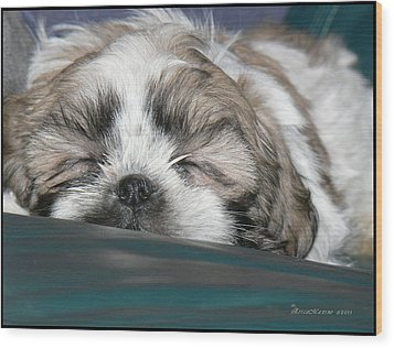 Wood Print featuring the photograph Bubba by EricaMaxine  Price