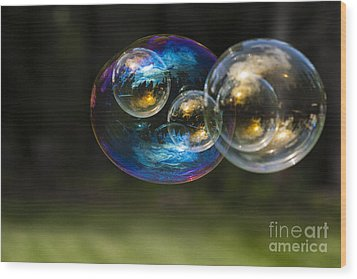 Bubble Perspective Wood Print by Darcy Michaelchuk