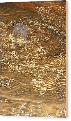Bubbling Cavern Spring Wood Print by T C Brown