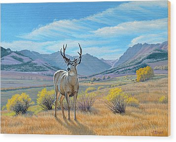 'buck Deer-tom Miner Basin' Wood Print by Paul Krapf