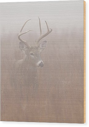 Wood Print featuring the photograph Buck In Fog by Rob Graham