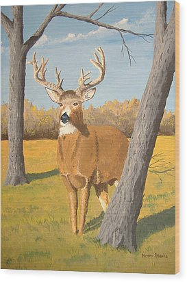 Bucky The Deer Wood Print by Norm Starks