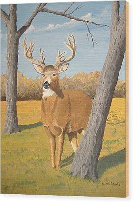 Bucky The Deer Wood Print