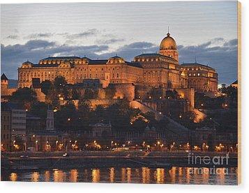 Budapest Palace At Night Hungary Wood Print by Imran Ahmed