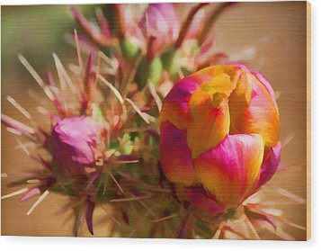 Budding Cactus Wood Print by Fred Larson