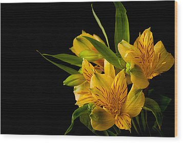 Wood Print featuring the photograph Budding Flowers by Sennie Pierson