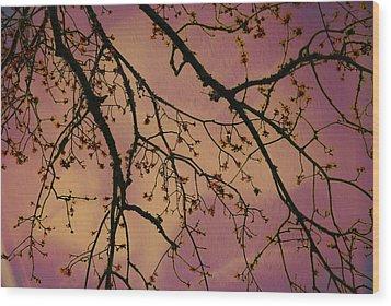 Budding Tree Wood Print