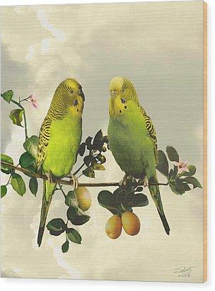 Budgerigars In Kumquat Tree Wood Print by IM Spadecaller