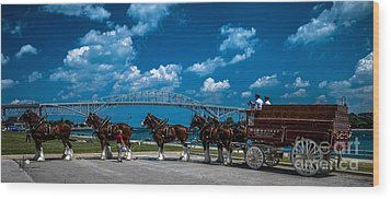 Budweiser Clydsdales And Blue Water Bridges Wood Print