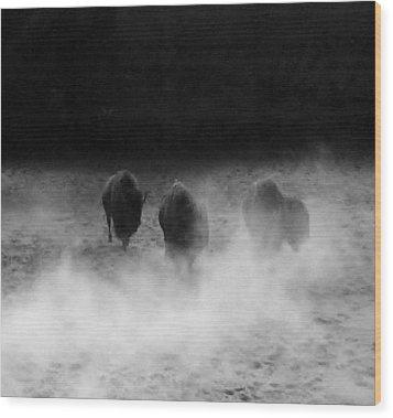 Buffalo Wood Print by Janice Spivey