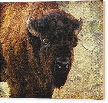 Buffalo Wood Print by Linda Cox