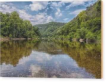 Buffalo National River Wood Print by Bill Tiepelman