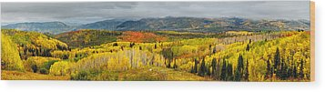 Buffalo Pass Steamboat Springs Co Wood Print by Teri Virbickis