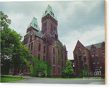 Buffalo Psychiatric Center Wood Print