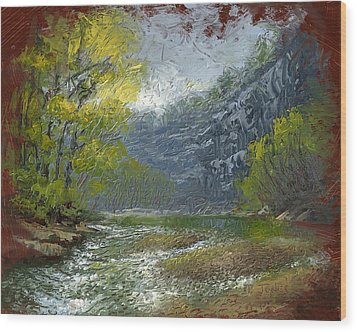 Buffalo River Bluff Wood Print by Timothy Jones