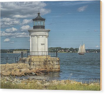 Wood Print featuring the photograph Bug Light by Jane Luxton